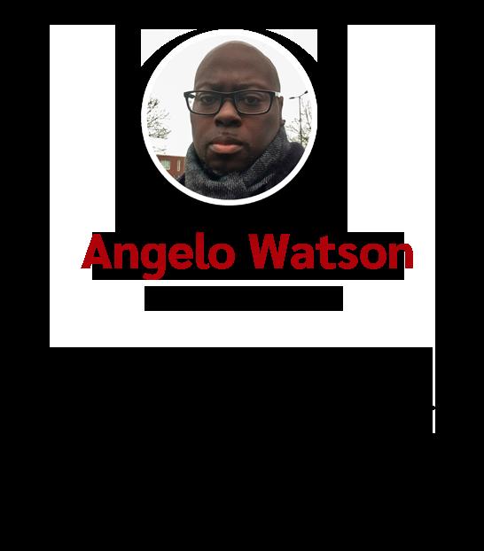 Organisatie - Review Angelo Watson